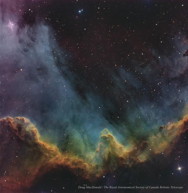 The Cygnus Wall