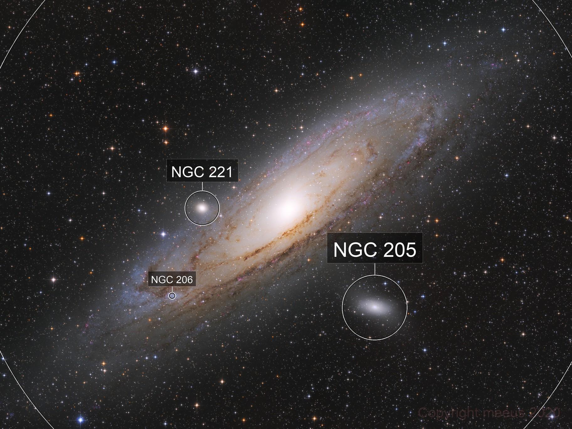 Mighty Andromeda
