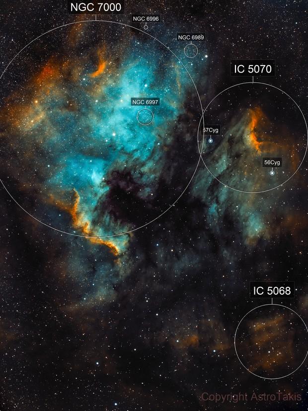 North America and Pelican Nebulae, SHO