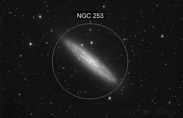 Scluptor Galaxy