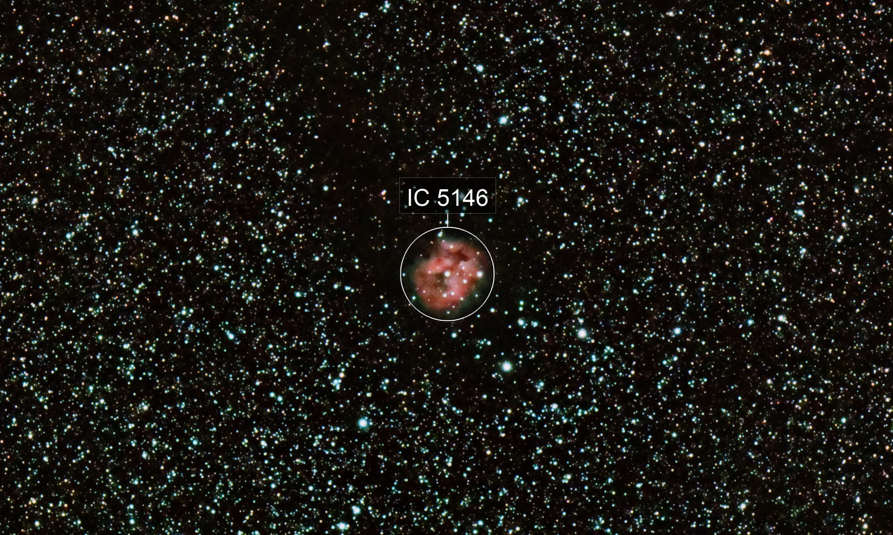 C19 Cocoon Nebula