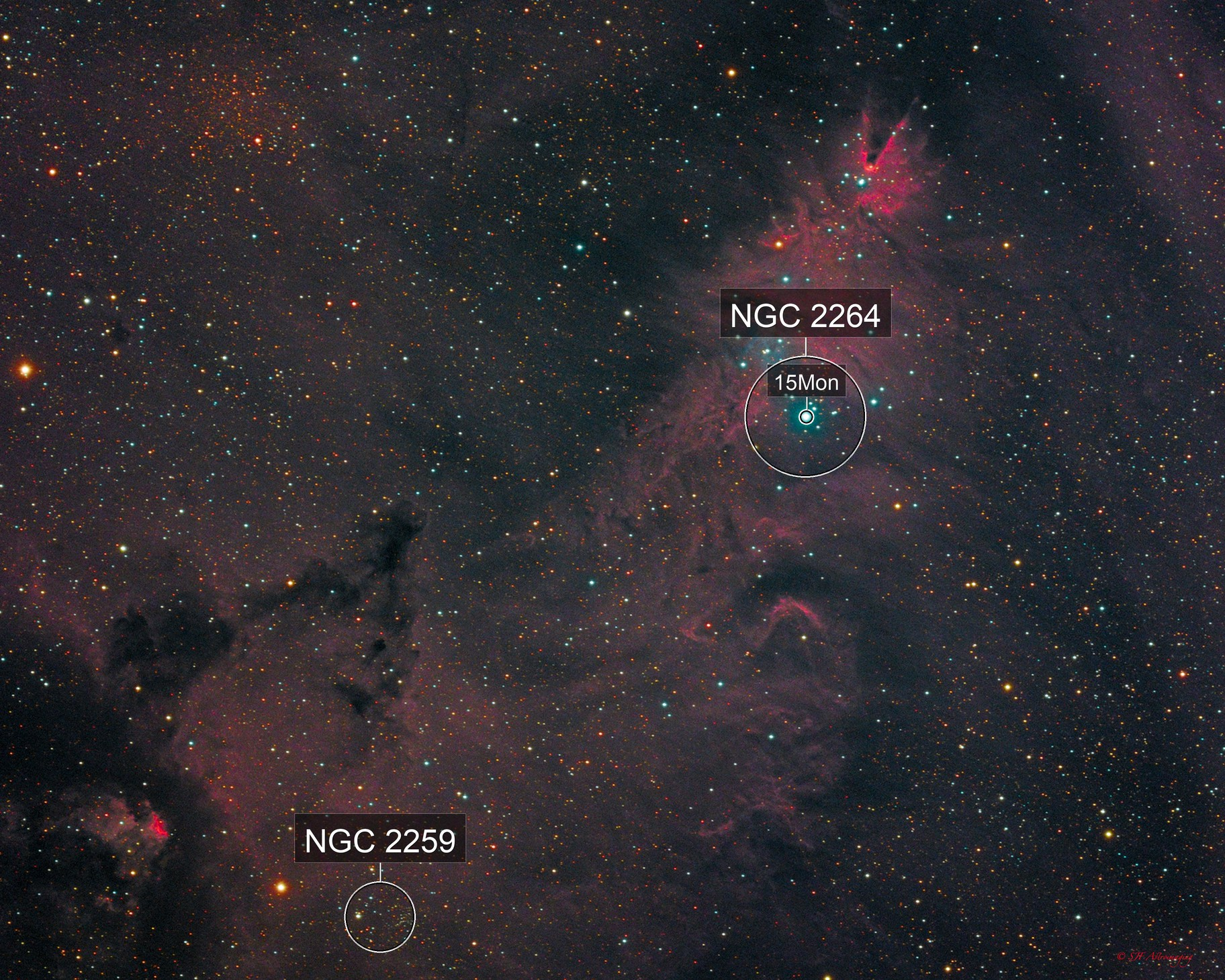 NGC 2264 - Cone Nebula and Christmas Tree Cluster
