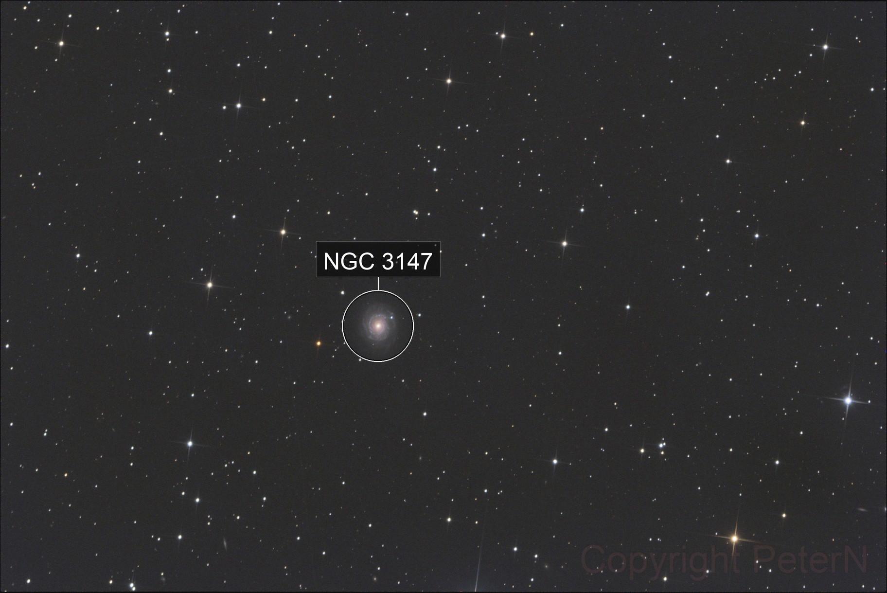 NGC 3147 / SN2021hpr