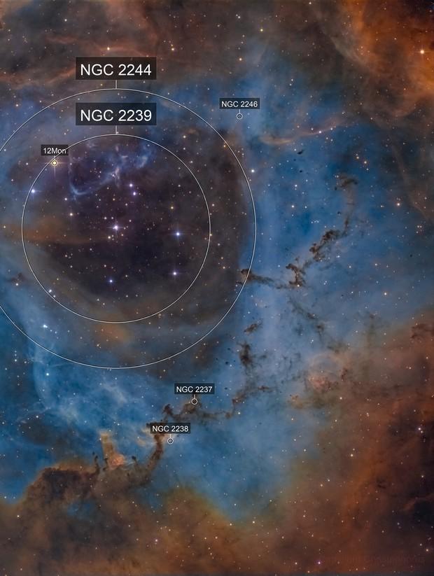 Bok globules in NGC 2244