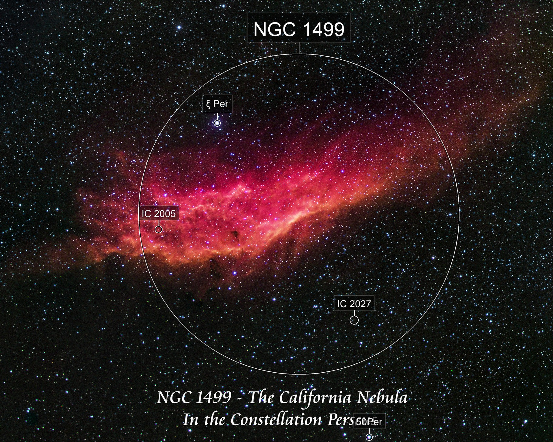 NGC 1499 - The California Nebula   H S Hß