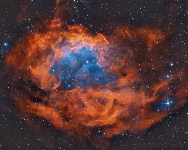 Sh2-261: Lower's nebula