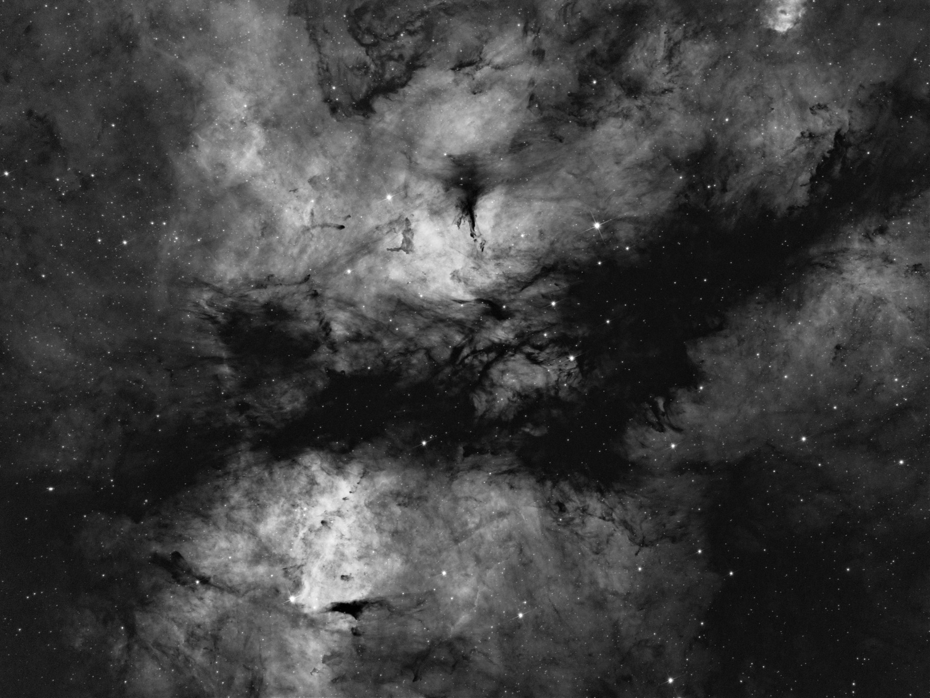 IC1318 Sadr dust lane