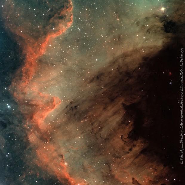 Cygnus Wall (SHO)