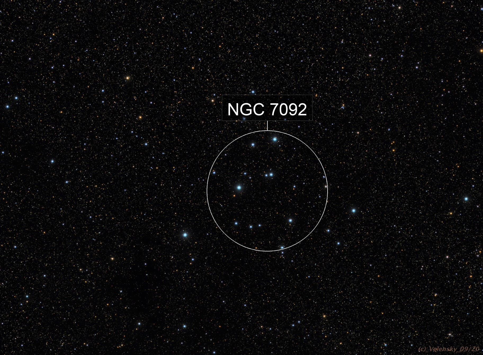 M39 - Galactic Cluster