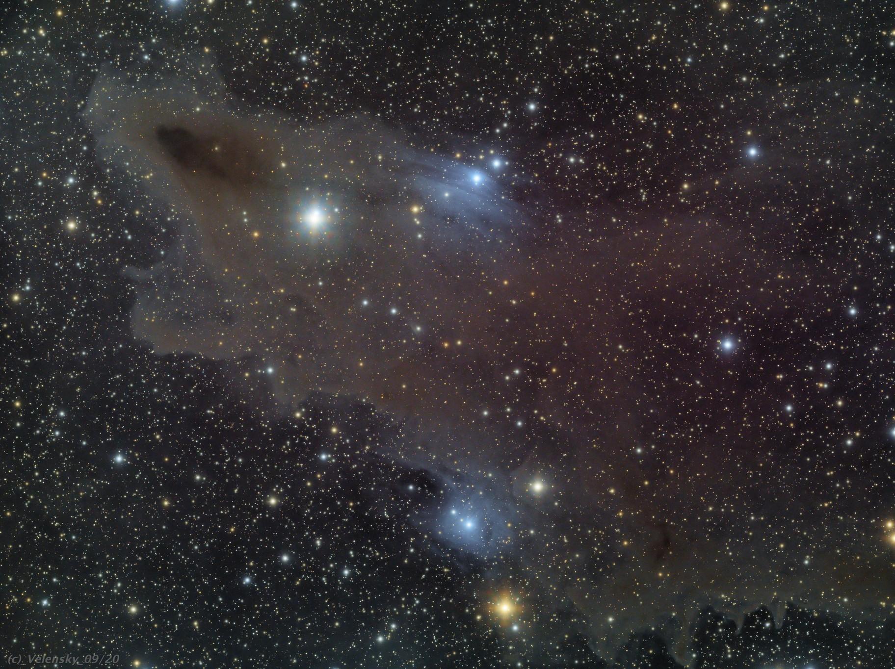 LDN1235 - Dark Shark Nebula