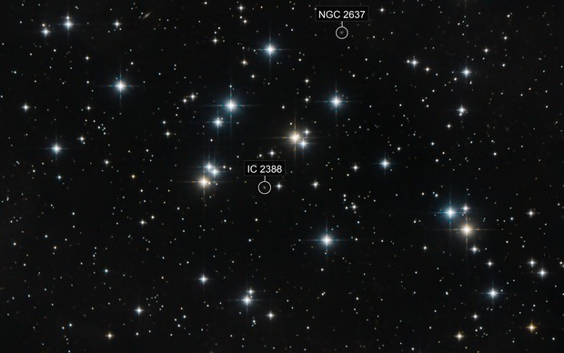 Messier 44, the Beehive Cluster