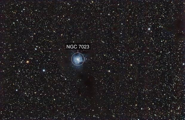 NGC 7023 - Iris nebula widefield