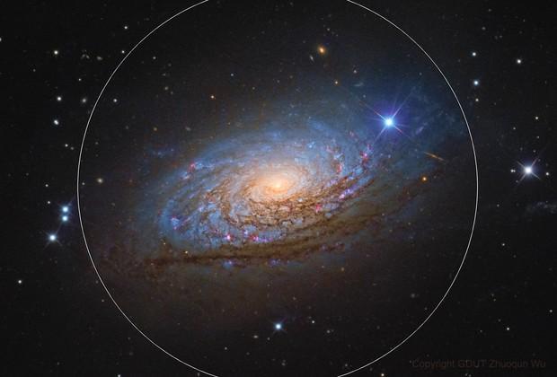 Sunflower Galaxy