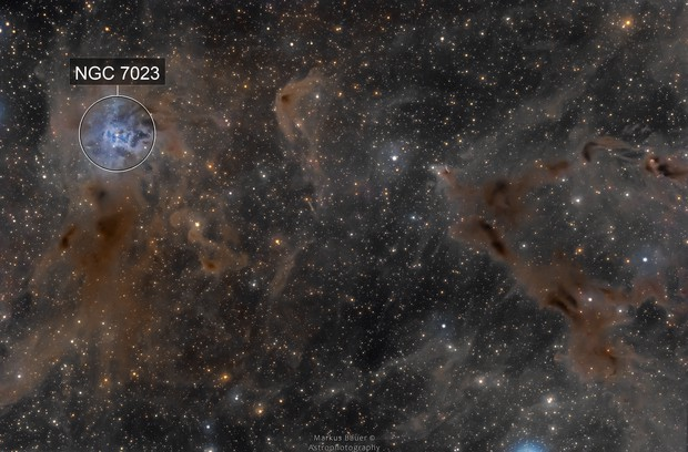 Iris Nebula (NGC7023) and Surroundings (LDN1158)