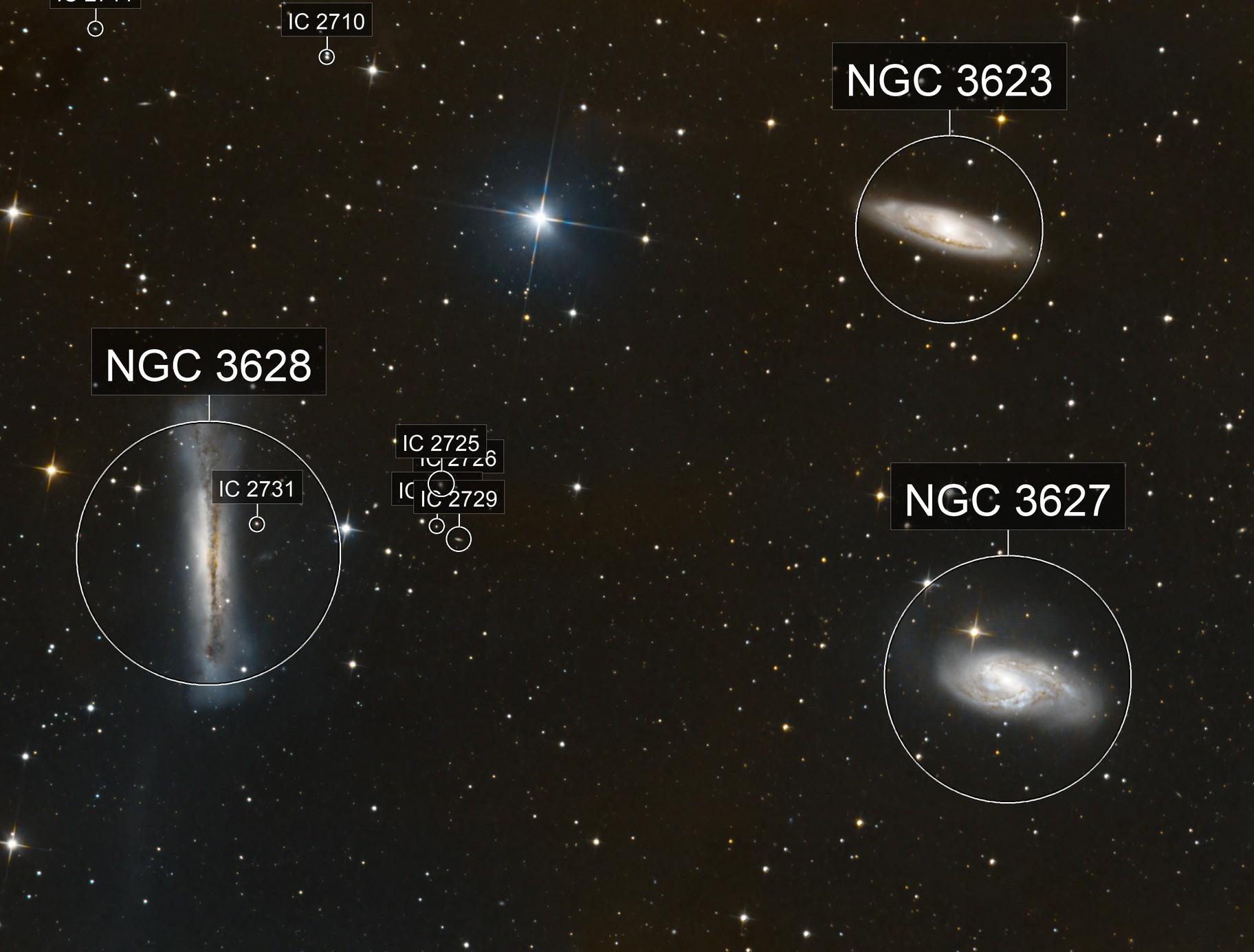 LEO TRIPLET M65 M66 NGC3628
