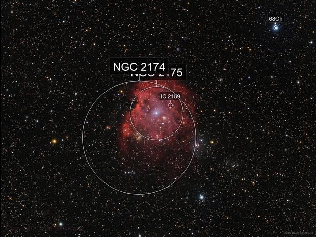 NGC 2174 - Monkey Head Nebula