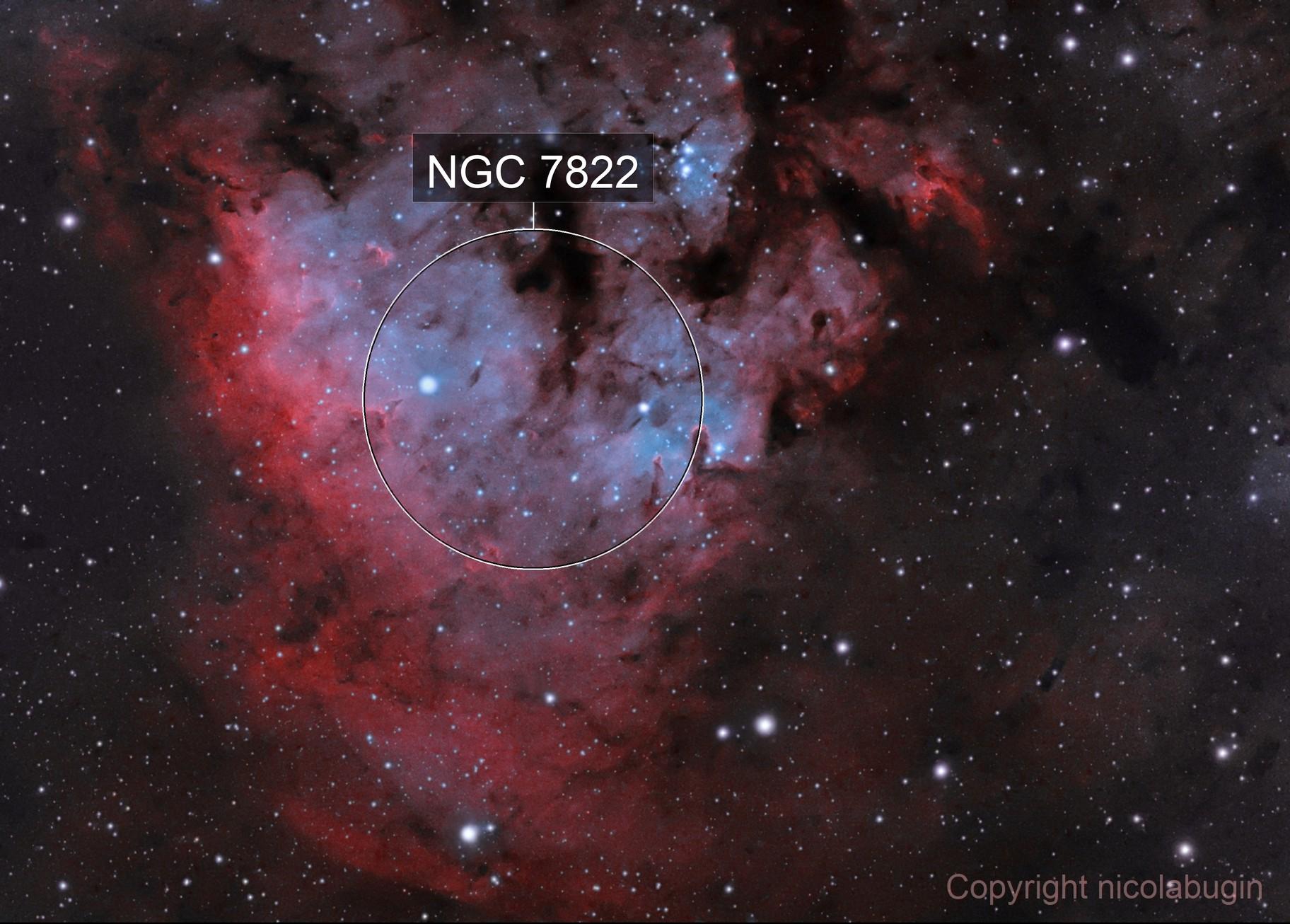 NGC7822 in Cefeo (HOO)