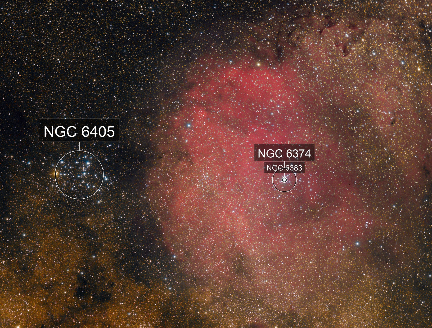 SH2-12 AND BUTTERFLY CLUSTER