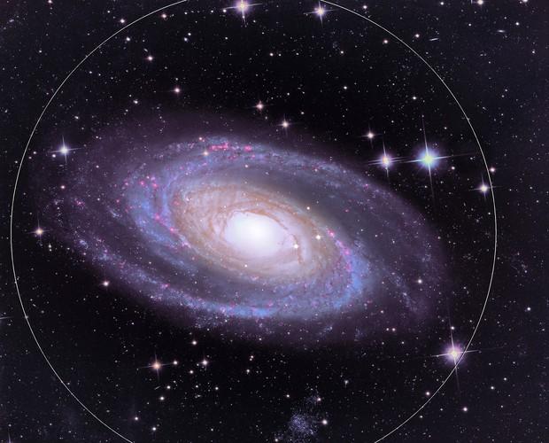 M 81 - Bode's Galaxy