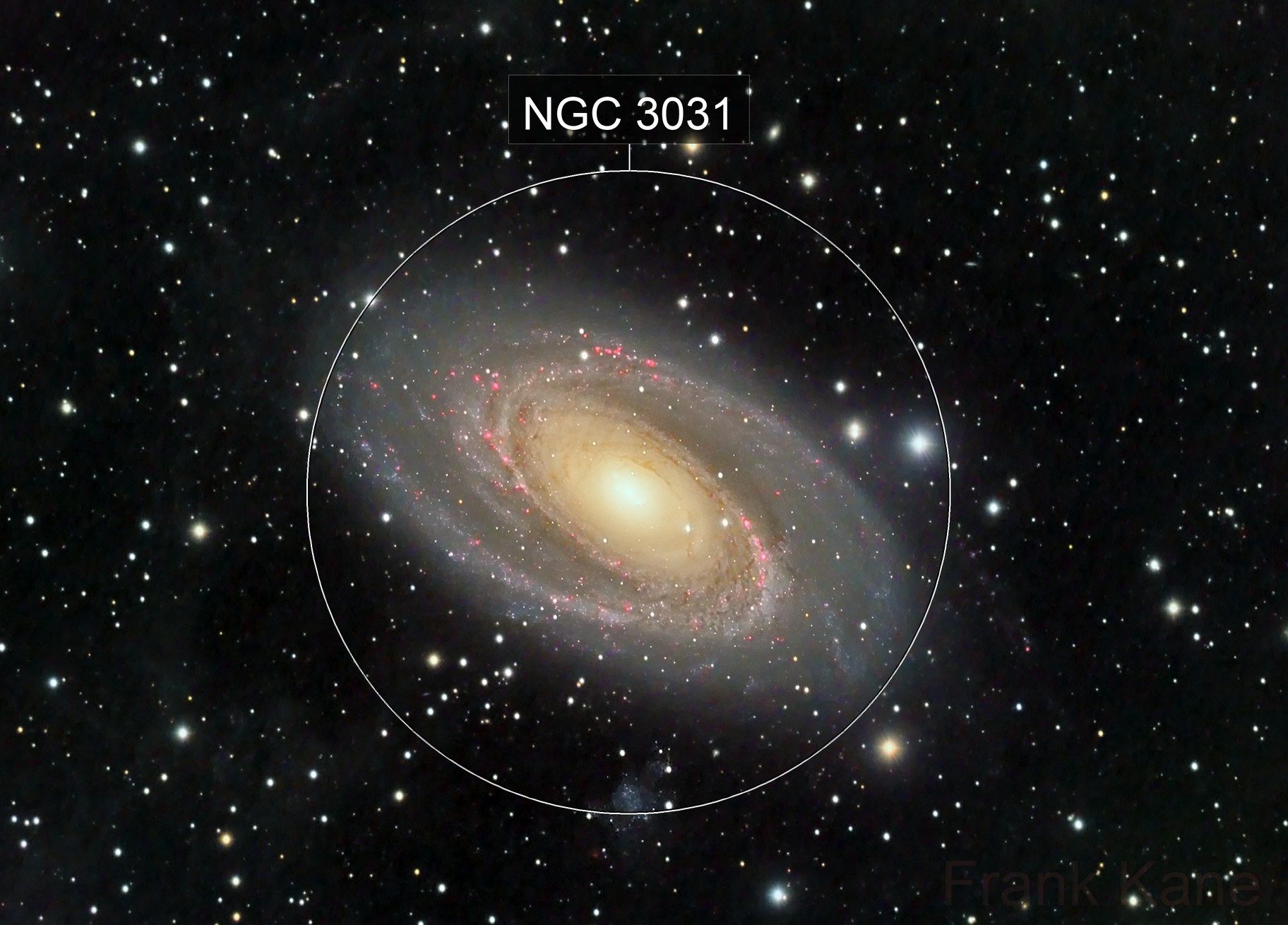 Another year, another M81 image