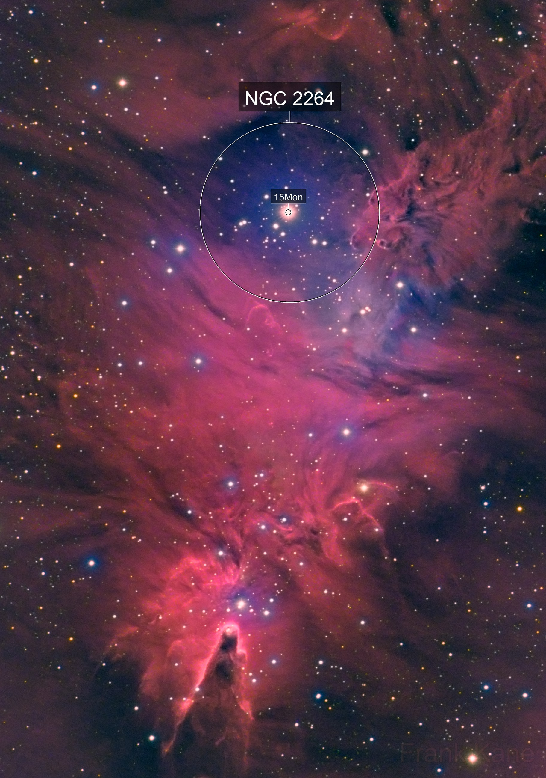Cone & Fox Fur Nebulas, HaRGB