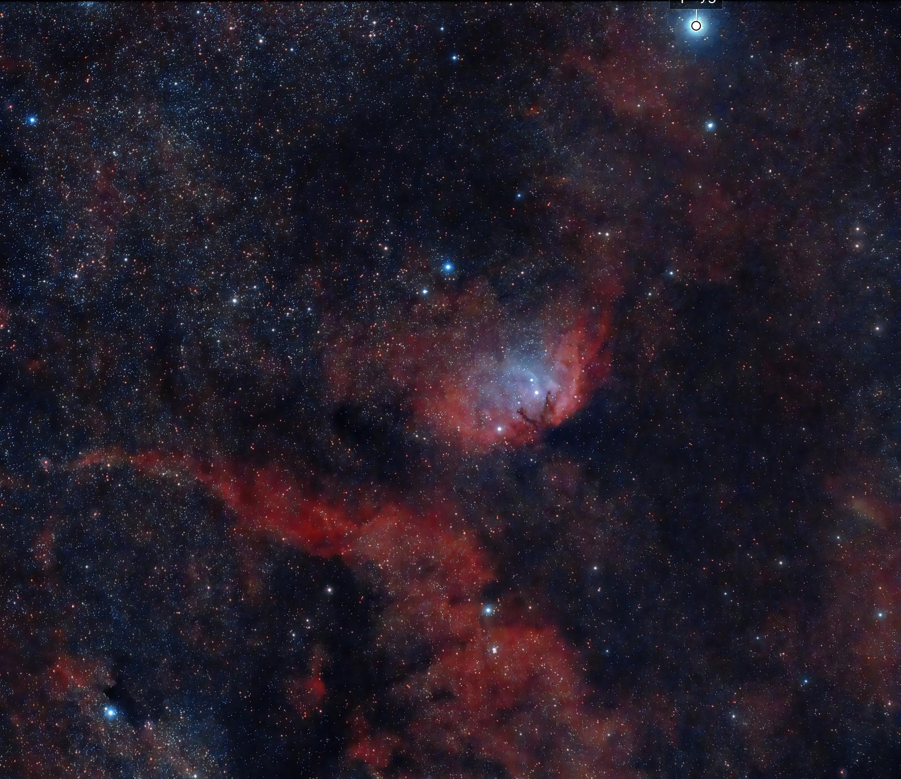 Tulip Nebula (Sh2-101)