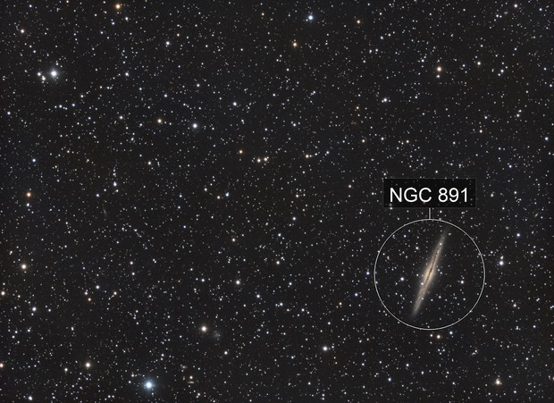 NGC891 Galaxy Cluster