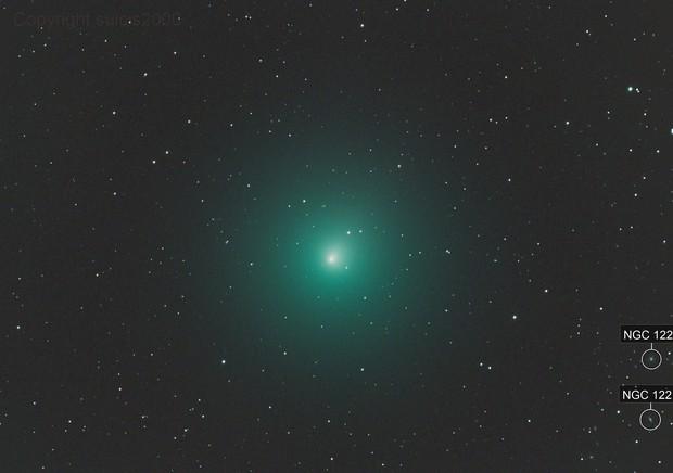 46P -Wirtanen 2018.12.08 ripresa negli unici 10 minuti di cielo sgombro da nubi  Celestron C14HD + Hypestar F1.9  ASI294Pro  10M