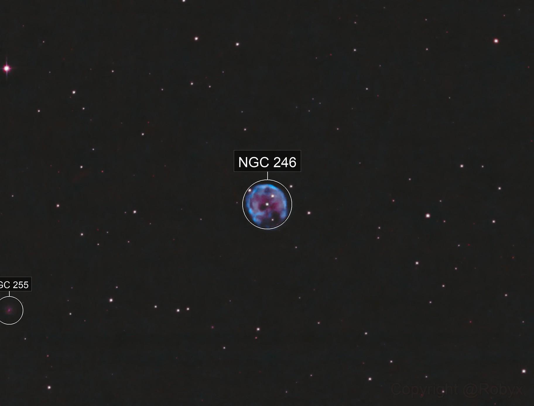 NGC246 Skull Nebula, Bicolor