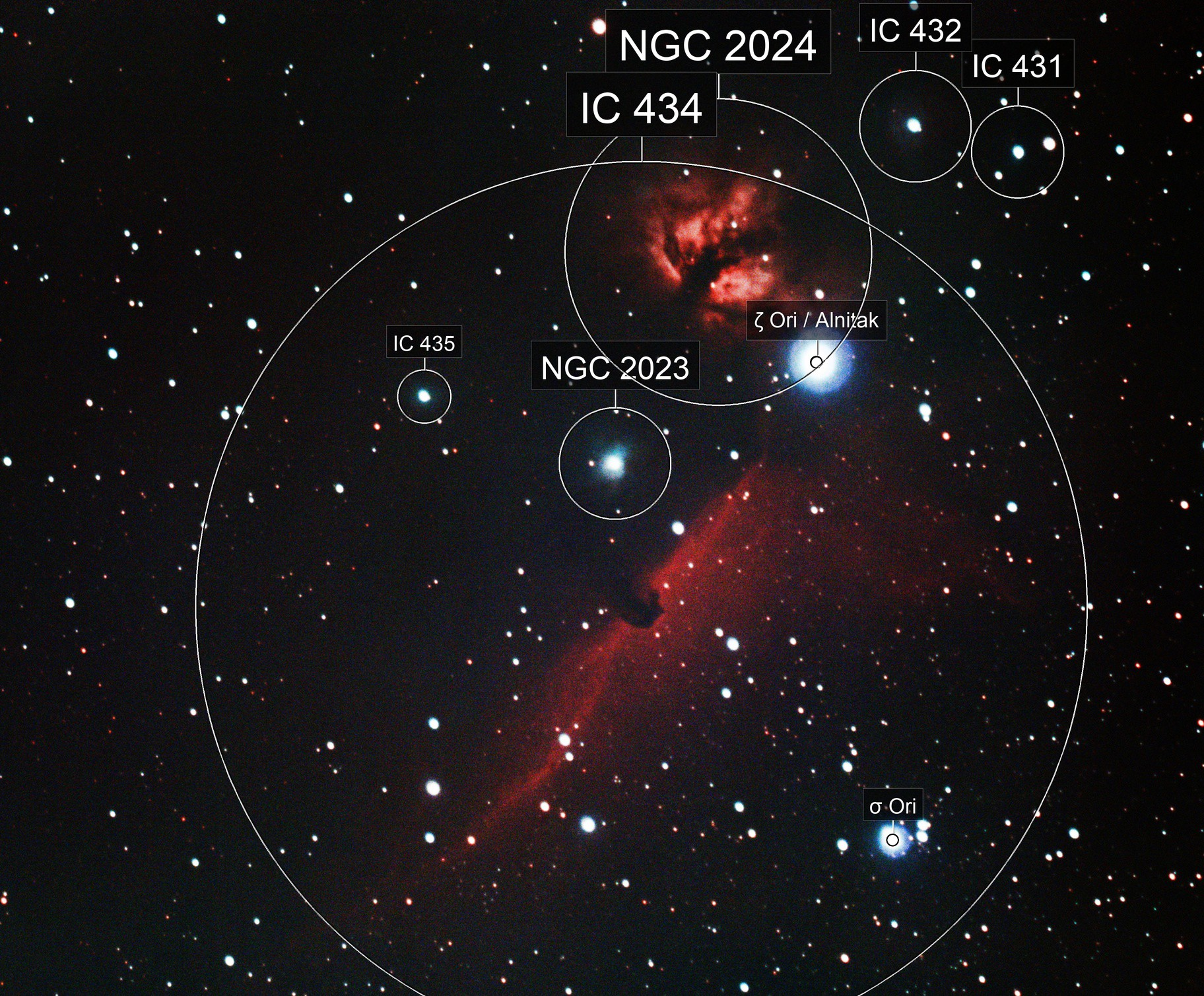 Around Alnitak (IC 434....)