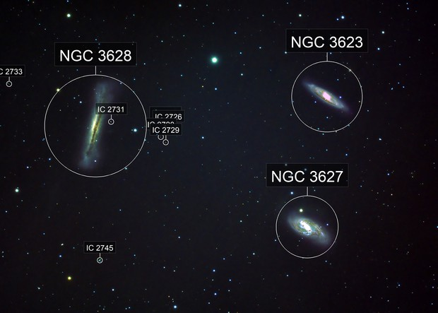 Leo Triplet M66 Group