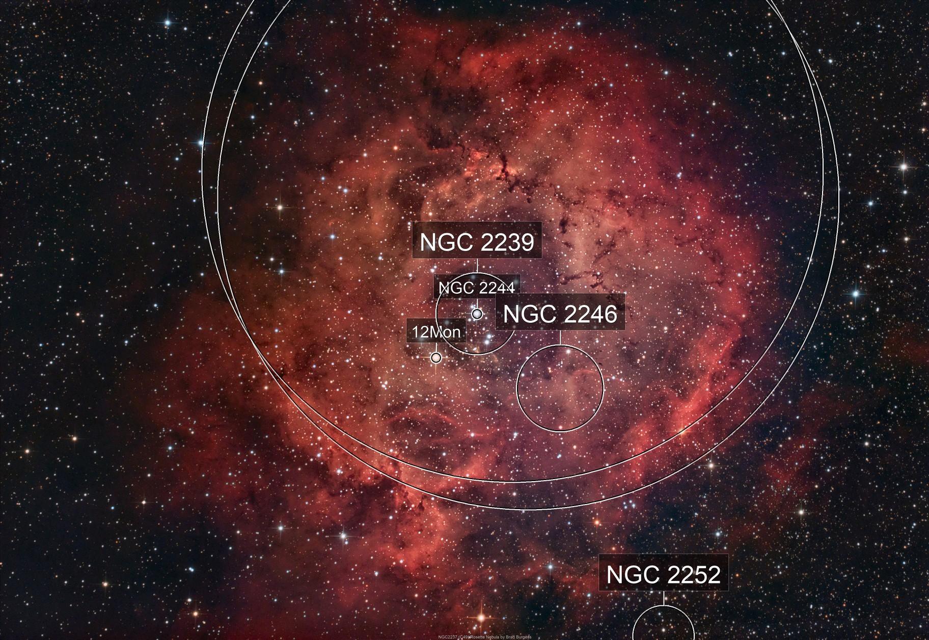 NGC 2237 (C 49) Rosette Nebula