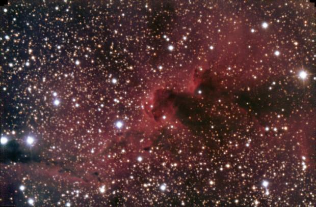 Inside IC1396