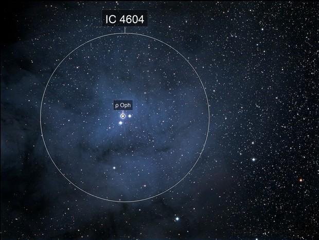 IC 4604 (Rho Ophiucus Nebula)