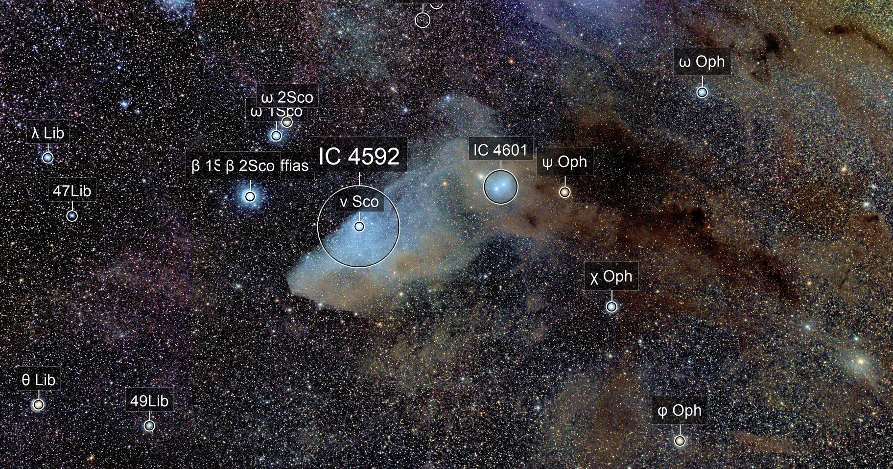 IC4592. The Blue Horsehead Nebula