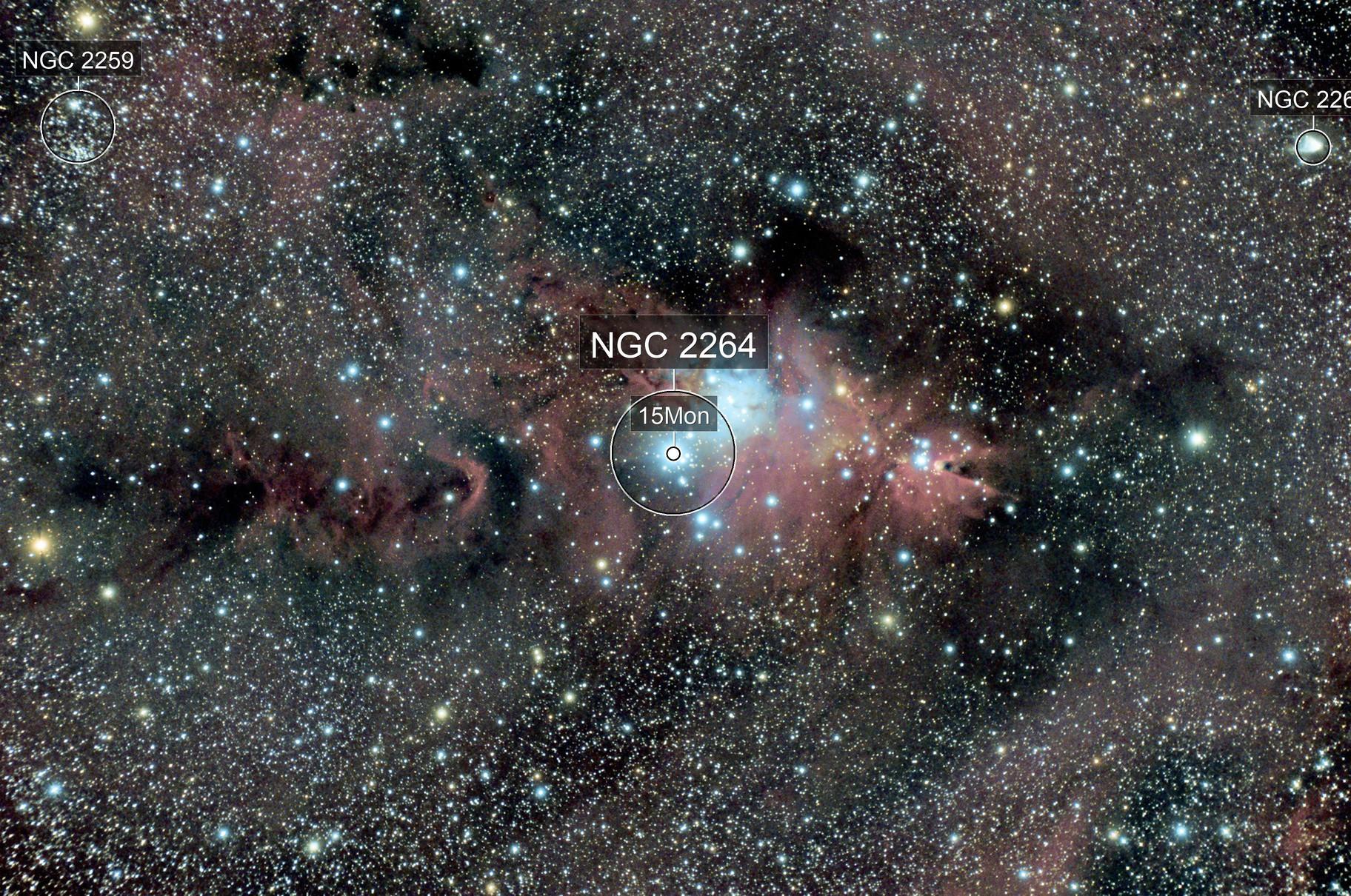 The Cone Nebula, Fox Fur Nebula and Christmas Tree Cluster...NGC2264