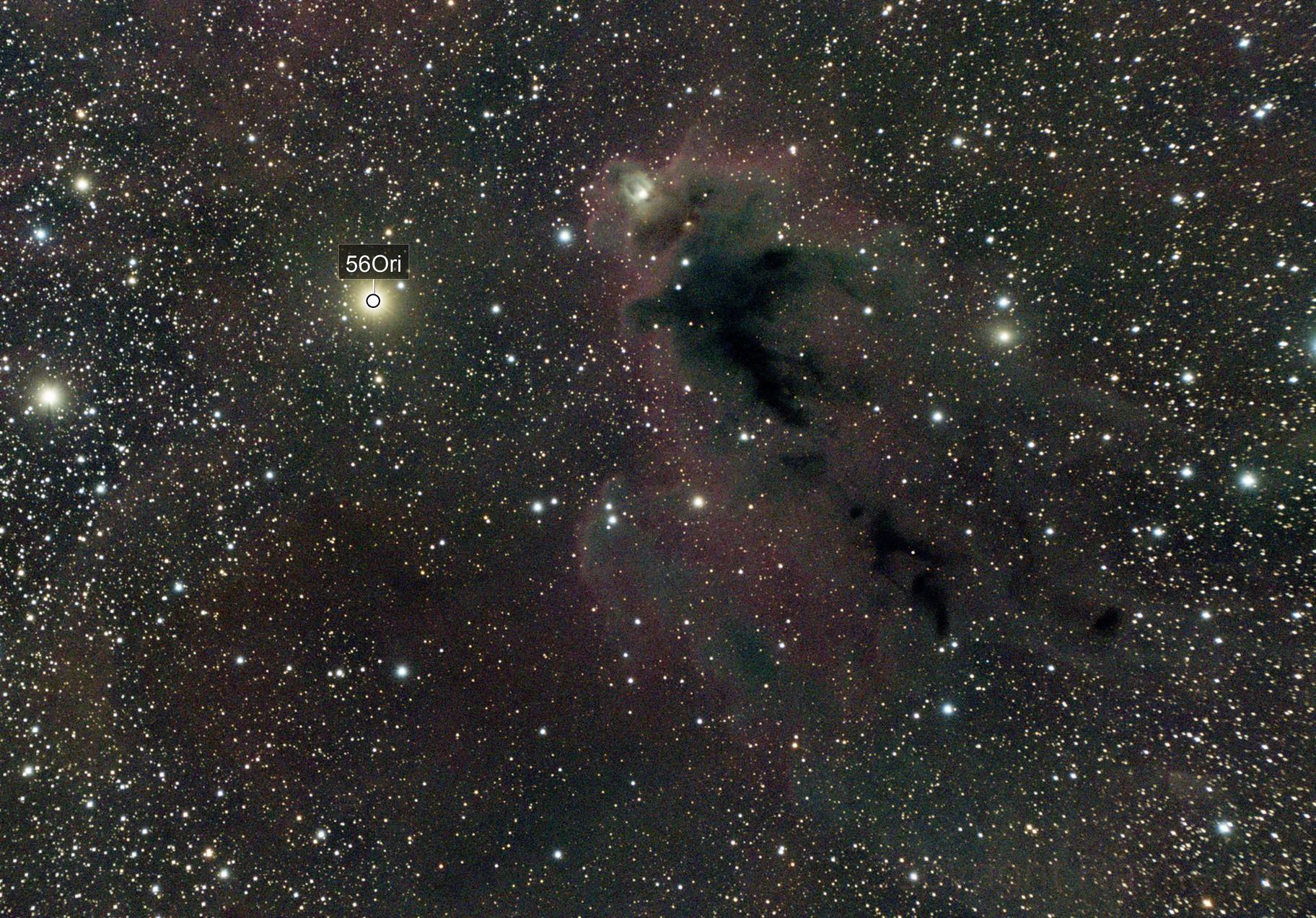 LDN 1622  Boogeyman Nebula