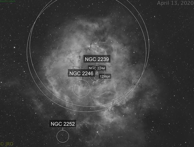 Rosette nebula in narrowband