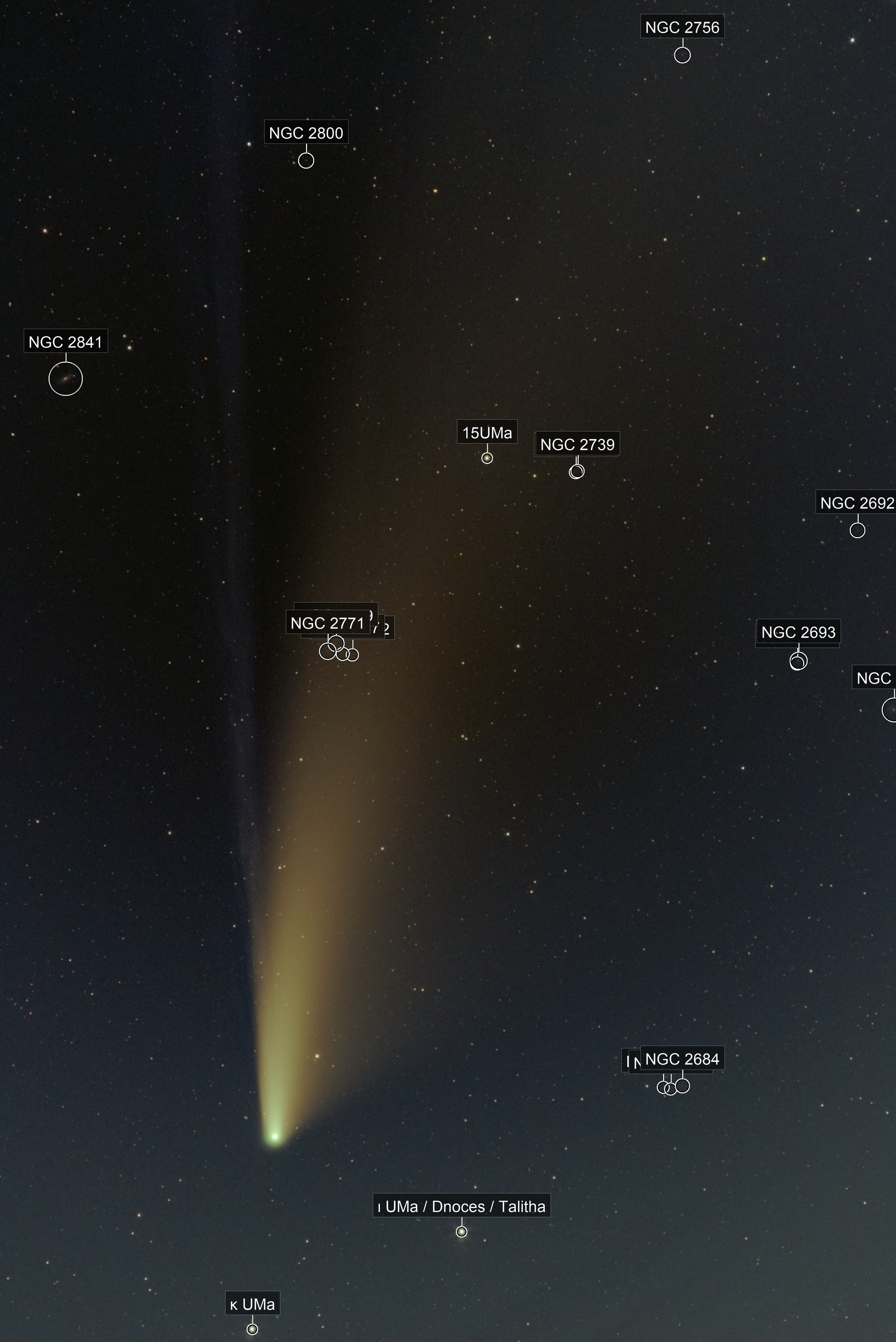 The Great Comet of 2020