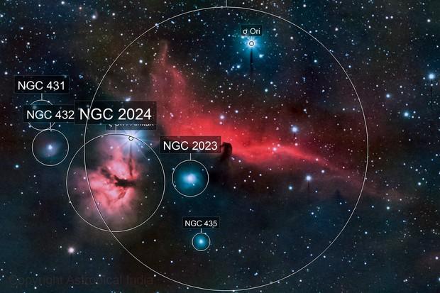 The Horsehead and Flame Nebula
