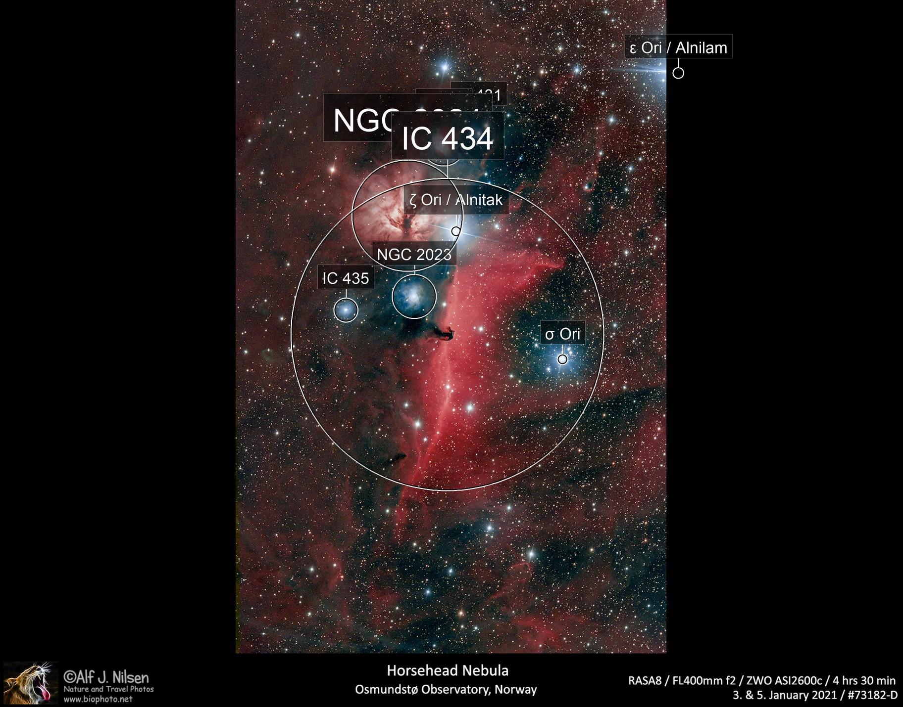 Horsehead Nebula and more