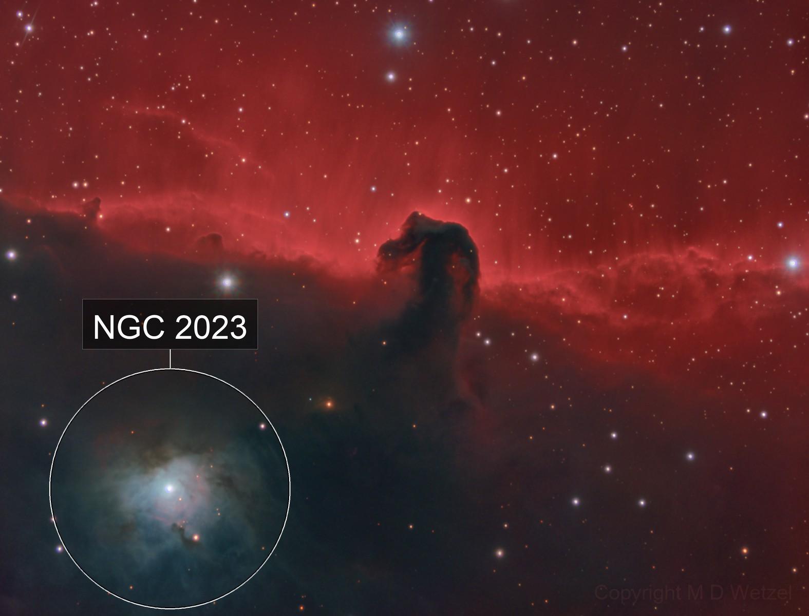 B33, IC 434 The Horsehead Nebula in HaLHaRGB