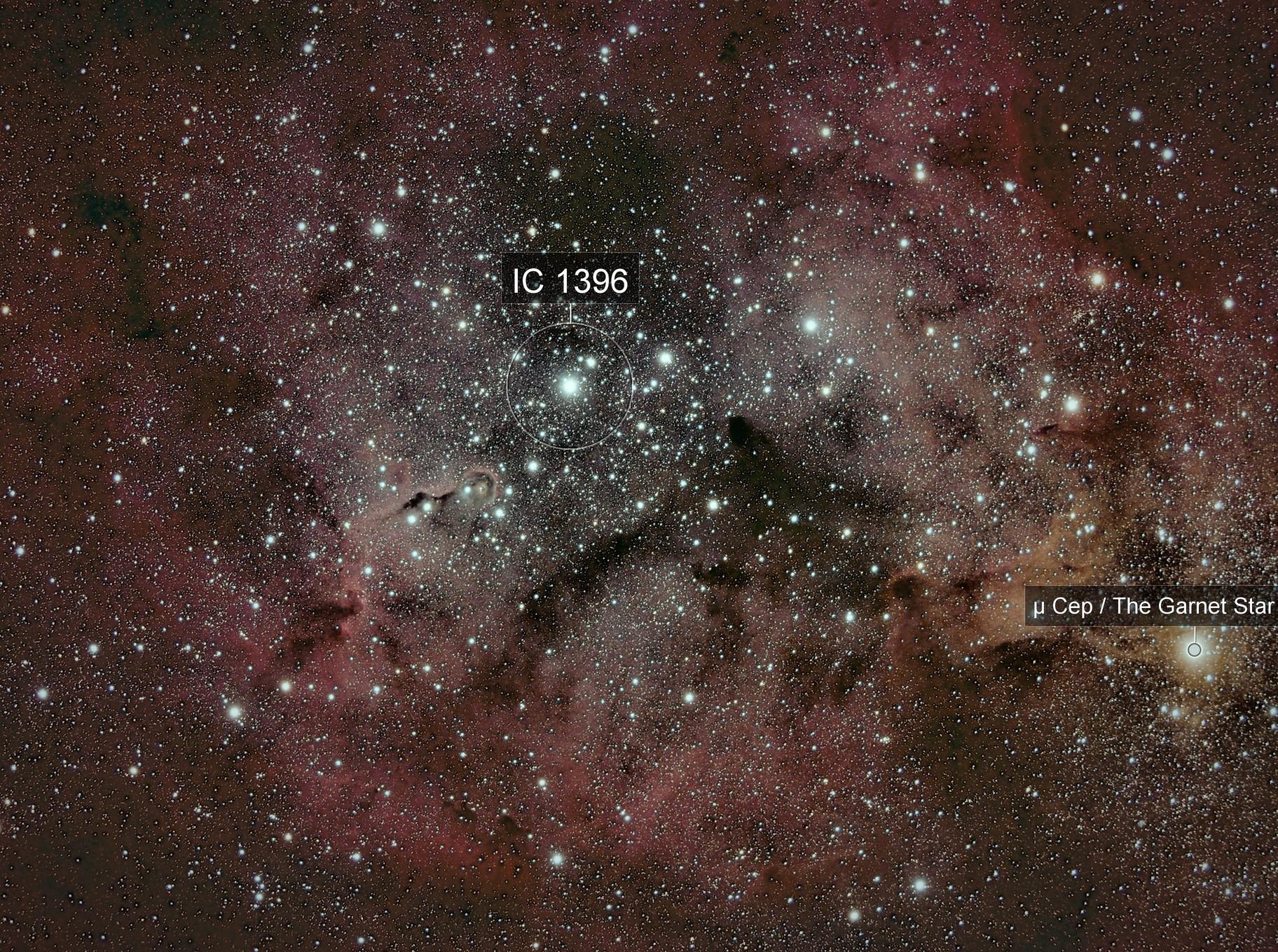 IC1396 amas ouvert et la Trompe d'Eléphant