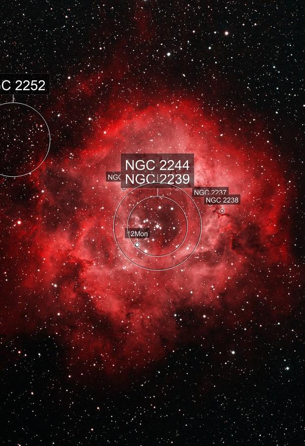 Rosette nebula in Bicolor