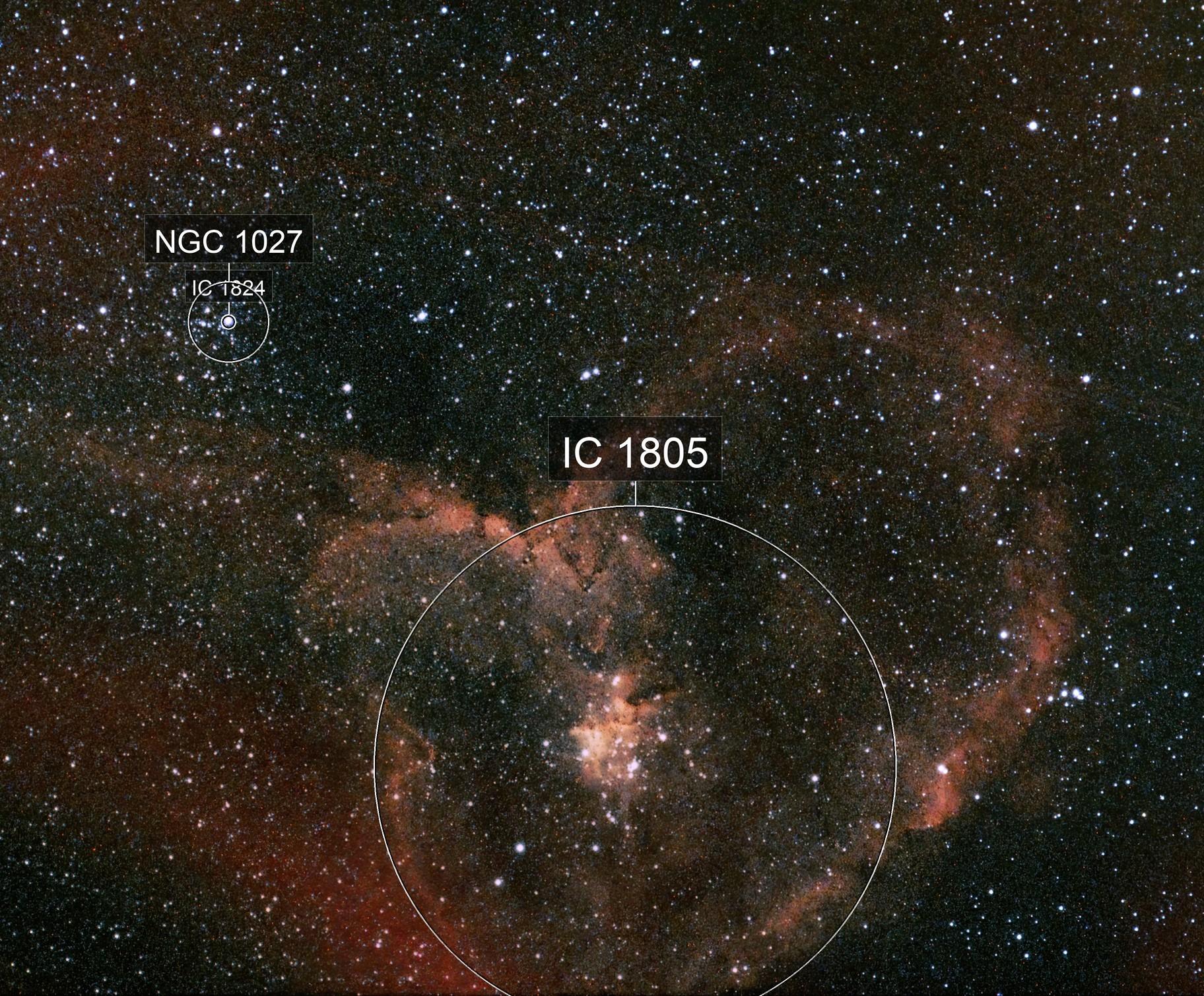 Heart Nebula. IC 1805