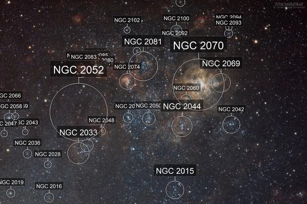 The Tarantula Nebula and Surroundings