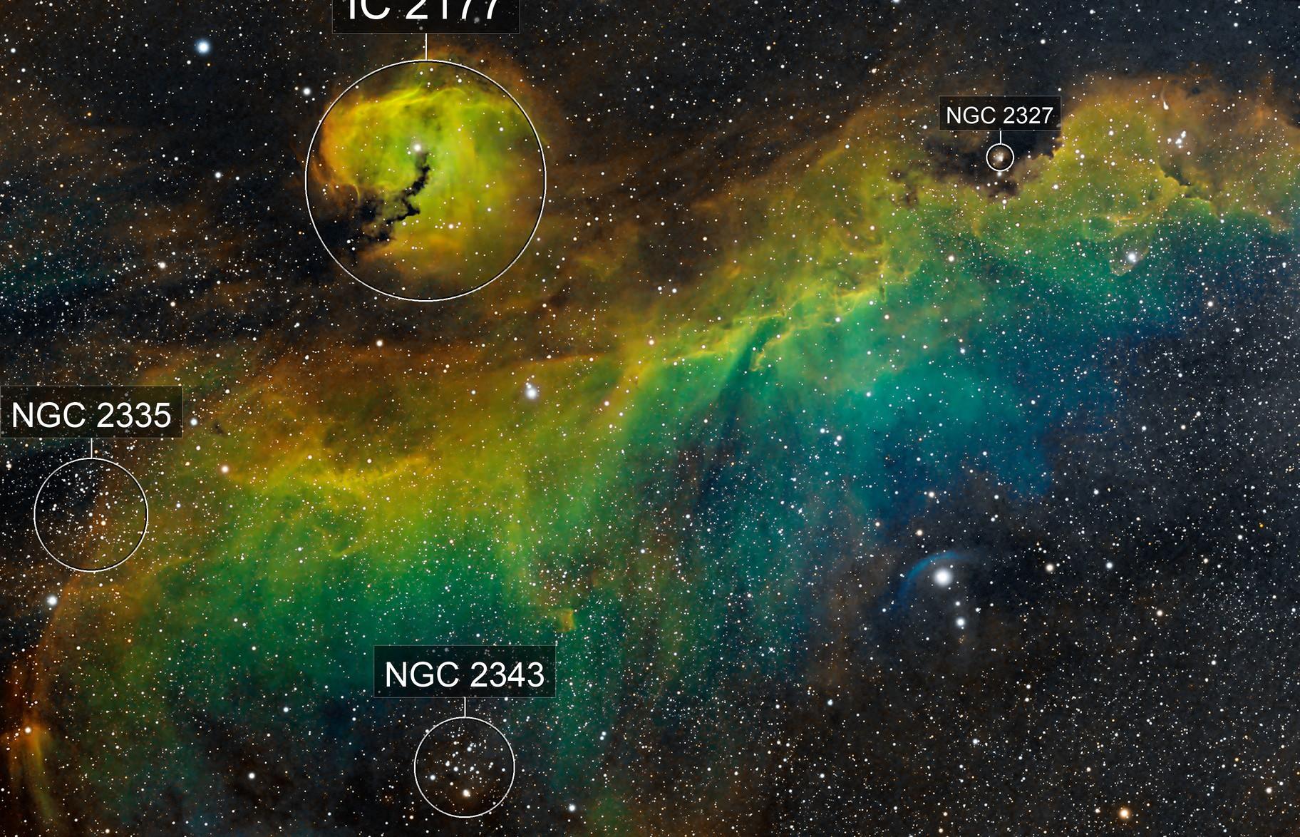 IC 2177 - Seagull Nebula RGBHSO