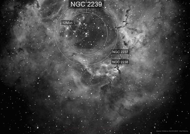Rosette Nebula in H alpha