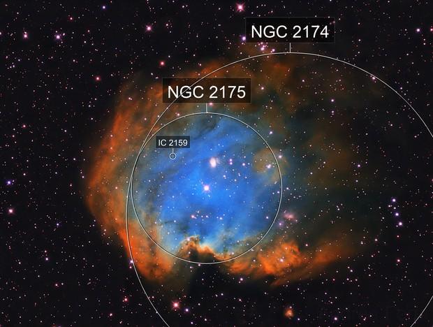 Monkey Head Nebula (NGC2174)