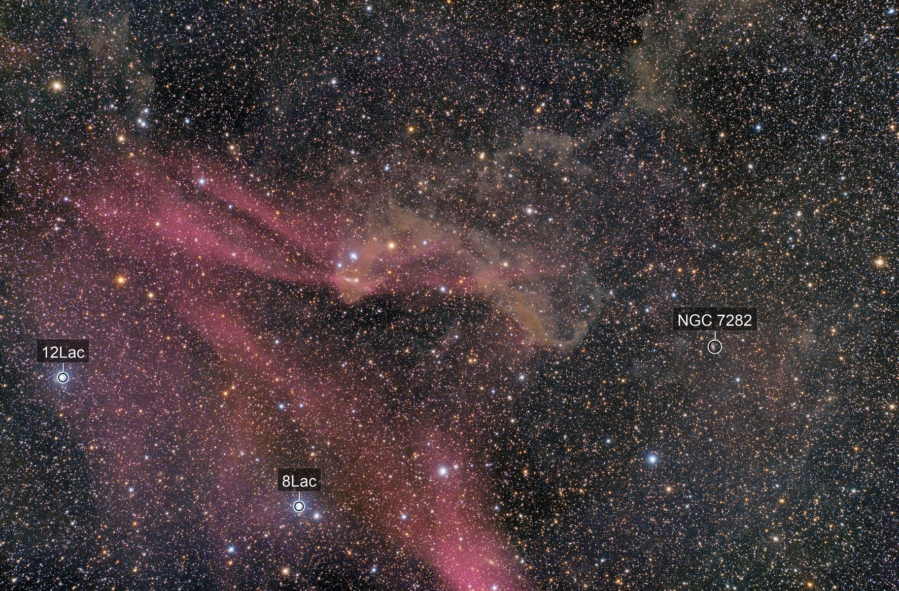 The Gecko Nebula - LBN 437